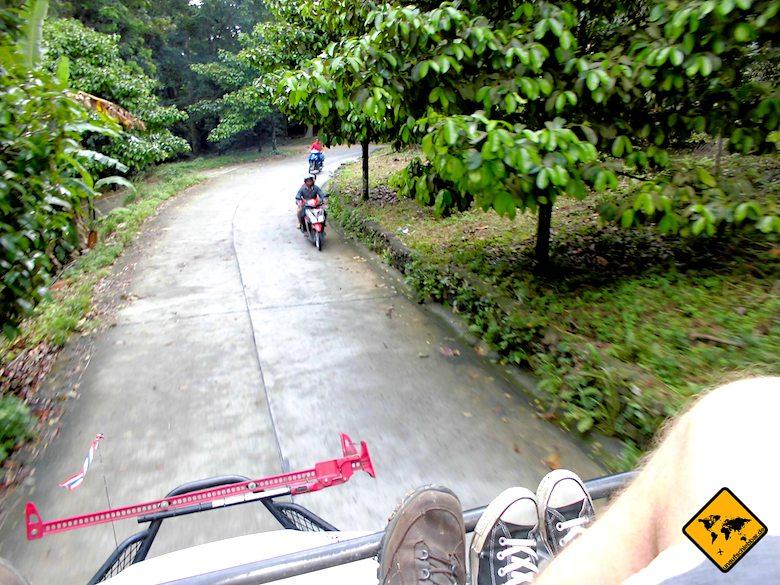 Dschungel-Safari Geländewagen Koh Samui