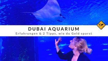 Dubai Aquarium – Erfahrungen & 2 Tipps, wie du Geld sparst