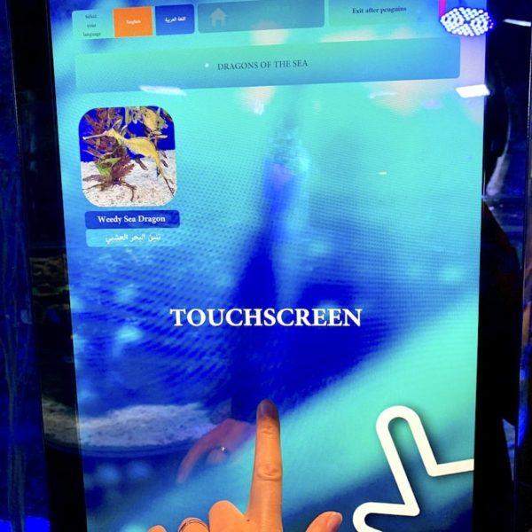 Dubai Aquarium Touchscreen