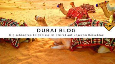 Dubai Blog – die schönsten Erlebnisse im Emirat auf unserem Reiseblog