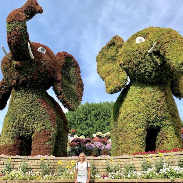 Dubai Blumengarten Elefanten