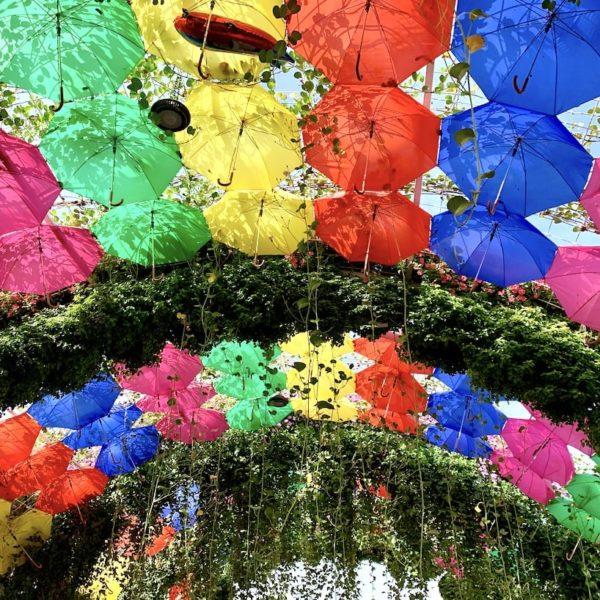Die bunte Schirm Passage ist für viele Besucher ein Highlight im Miracle Garden in Dubai