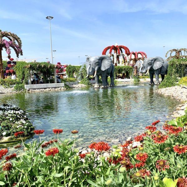 Dubai Miracle Garden Teich