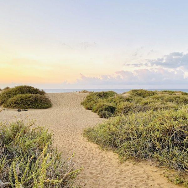 Dünen Playa Jarugo