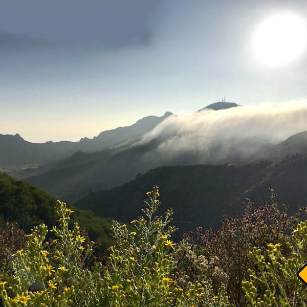 El Tanque Landschaft Teneriffa Geheimtipps