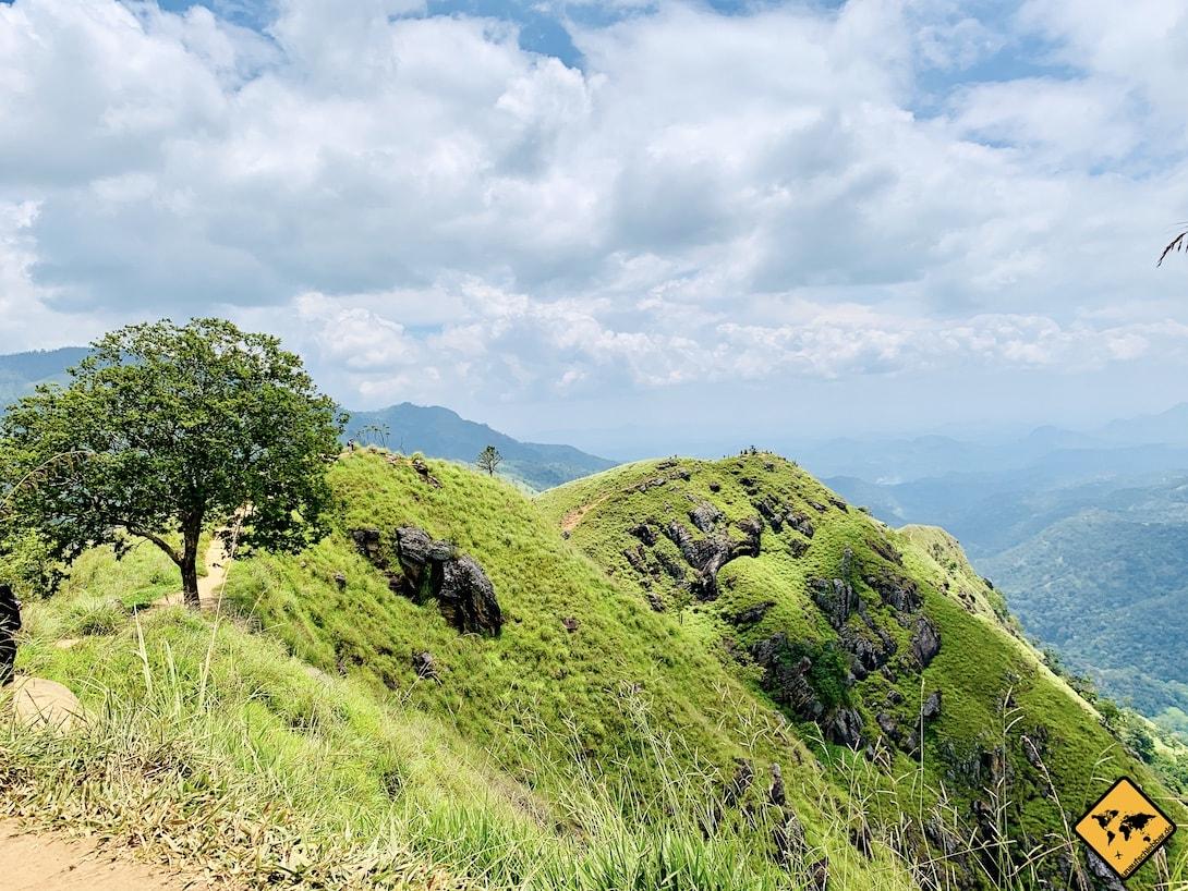 Ella Sri Lanka grüne Natur Mini Adam's Peak