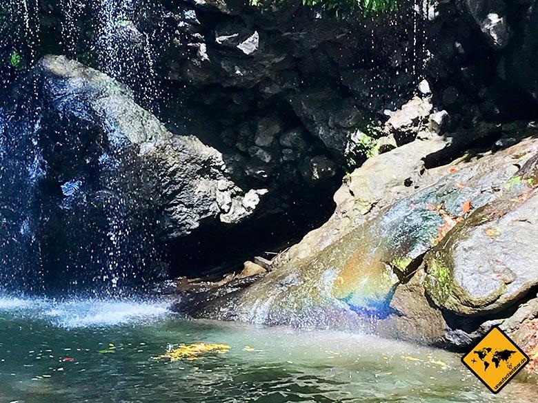 Fisch Bemalung Lombok Wasserfall Tiu Pituq