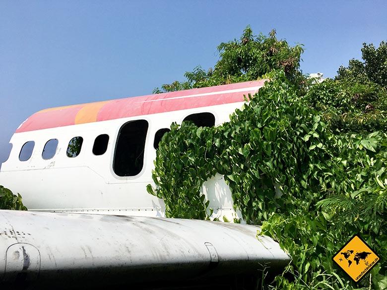 Flugzeugfriedhof Bangkok Wrack Pflanzen