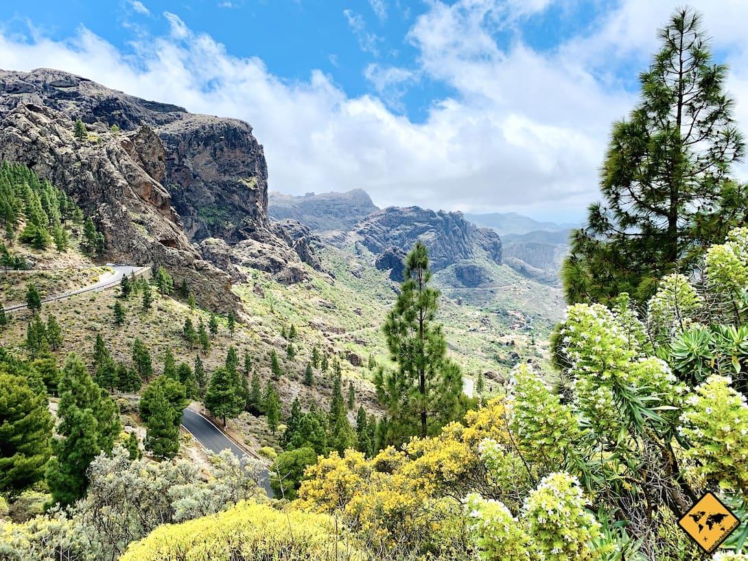 Frühling Gran Canaria Wanderung Roque Nublo