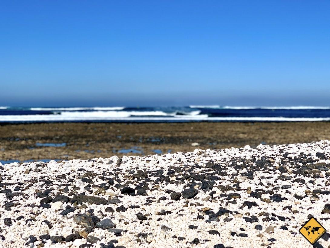 Fuerteventura Popcorn Strand kanarische Inseln