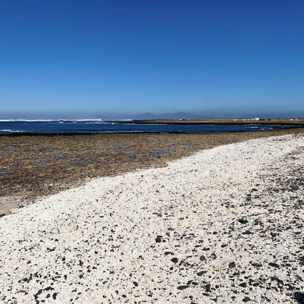 Fuerteventura Sehenswürdigkeiten Playa El Majanicho Popcorn Strand