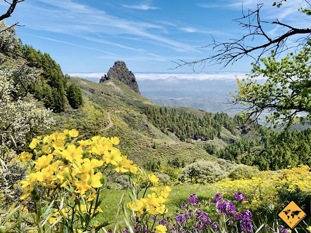Fuerteventura oder Gran Canaria Landschaft