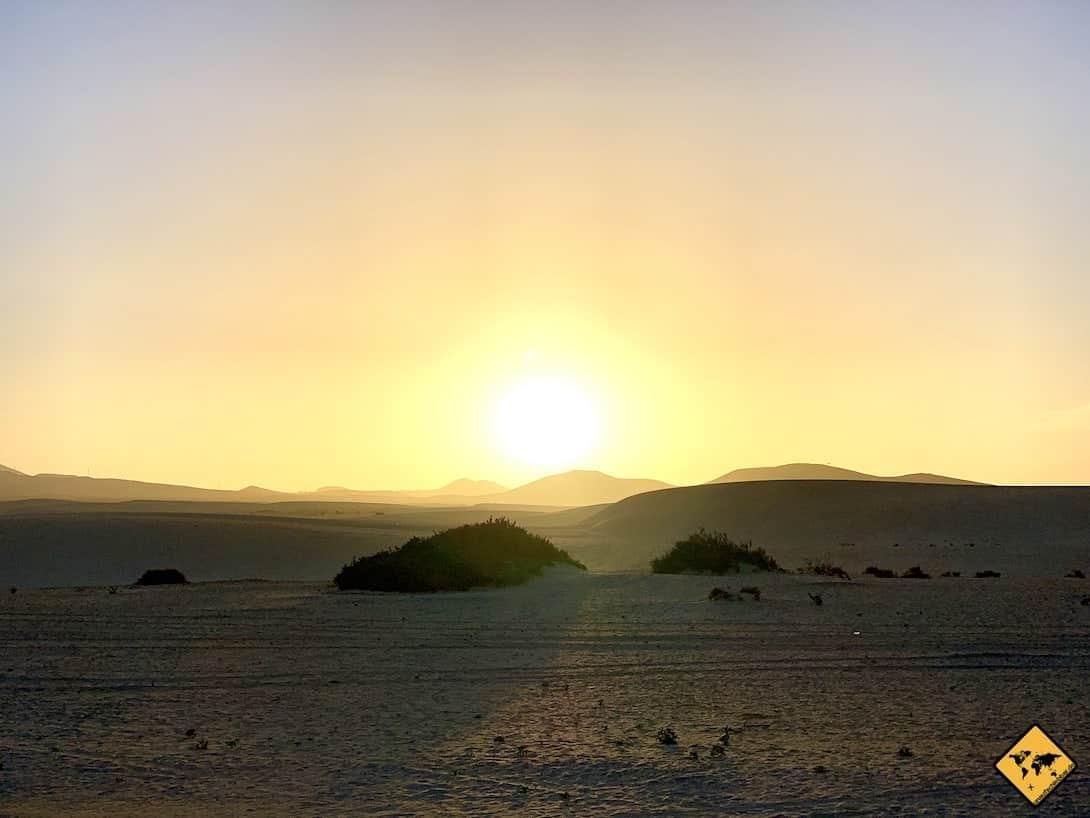 Fuerteventura oder Teneriffa Sanddünen Corralejo