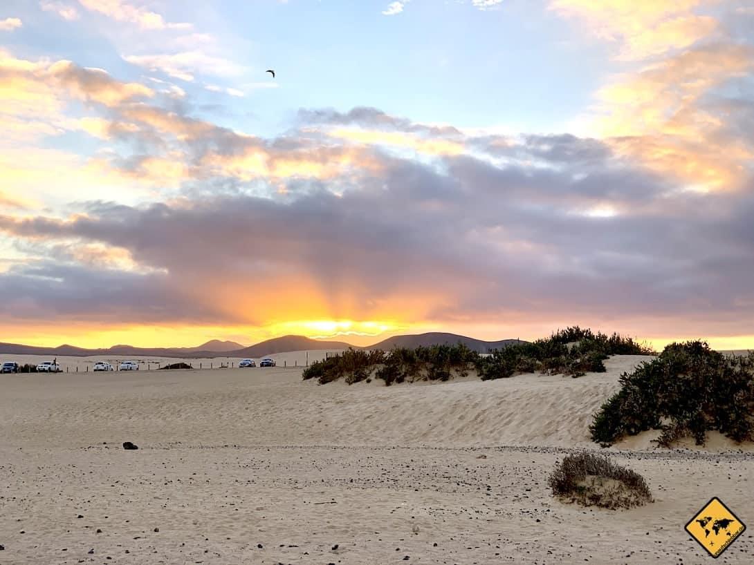 Fuerteventura wandern Dünen Corralejo