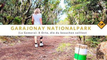 Garajonay Nationalpark (La Gomera): 8 Orte, die du besuchen solltest
