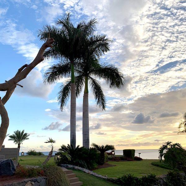 Garten Ritz-Carlton Playa Abama Teneriffa