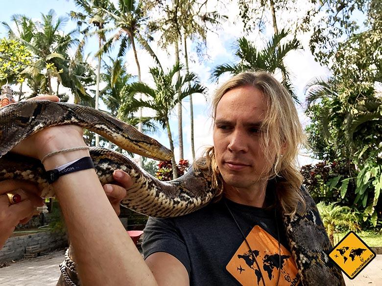 Geschenke für Reisende - T-Shirt Reisegeschenke - Python-Goa-Gajah