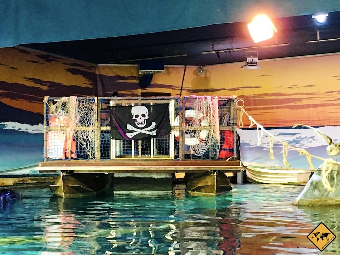 Glasboden-Boot Becken Sea Life Oberhausen