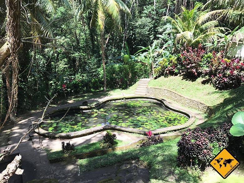 Goa Gajah Seerosen-Teich