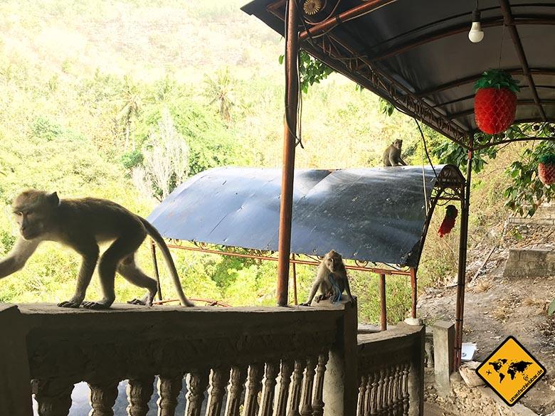 Goa Giri Putri Nusa Penida Affen