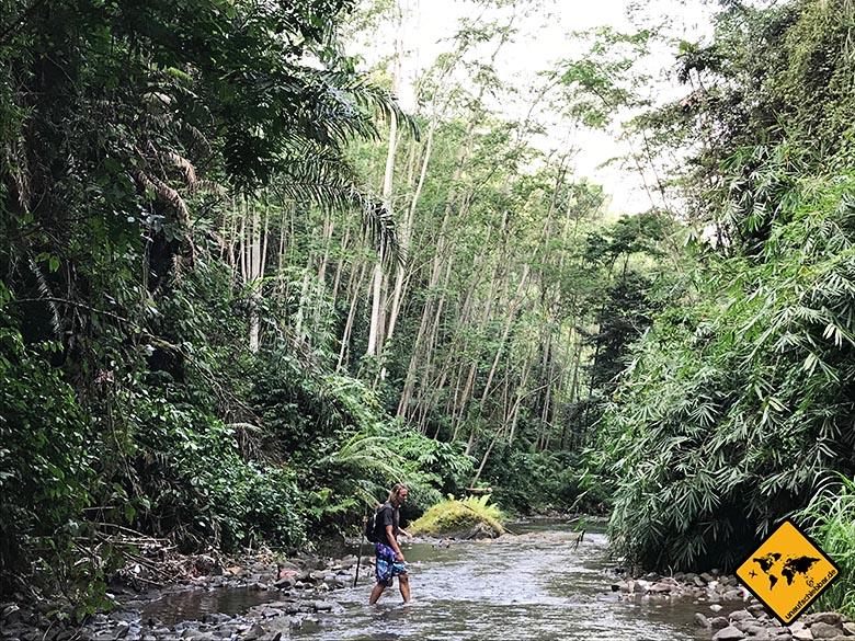 Goa Rang Reng Trekking Bali Tipps