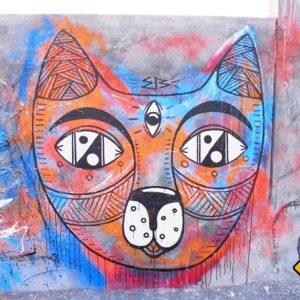 Graffitis und Katzen prägen das Strassenbild auf einer Rundreise durch Bali