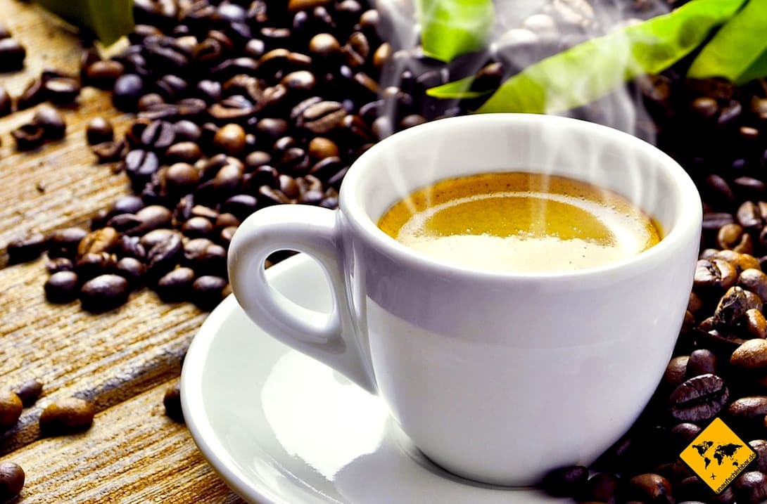 Gran Canaria Sehenswürdigkeiten Kaffeeplantage
