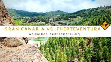 Gran Canaria oder Fuerteventura – Welche Insel passt besser zu dir?