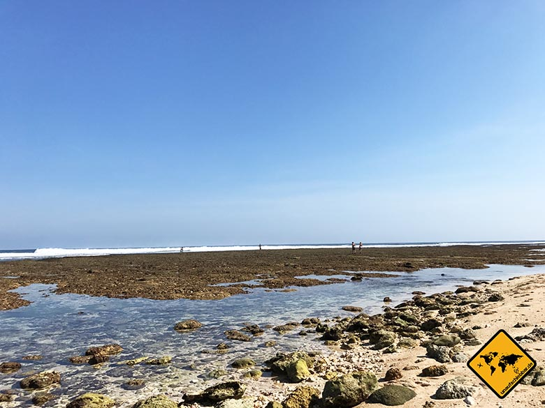 Green Bowl Beach Algen
