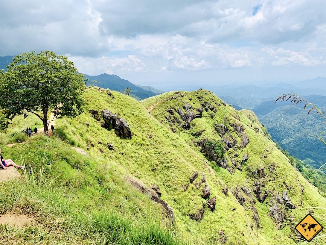 Grüne Hügel Gipfel Little Adam's Peak