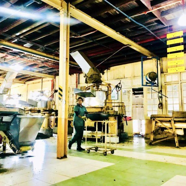 Hatton Tee-Fabrik