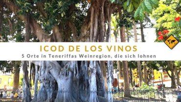 Icod de los Vinos – 5 Orte in Teneriffas Weinregion, die sich lohnen