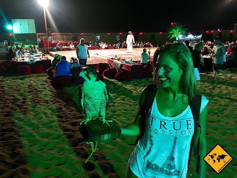 Im Dubai Wüstencamp kannst du einen echten Falken auf der Hand halten