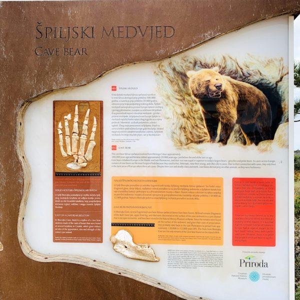 Informationstafel Höhlen-Bären Biserujka Špilja Krk
