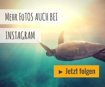 unaufschiebbar.de Instagram
