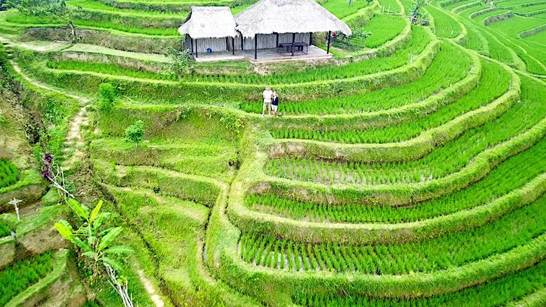 Interessante Orte auf Bali Jatiluwih Reisterrassen