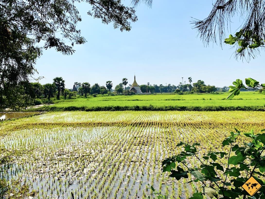 Inwa Myanmar Reisfelder