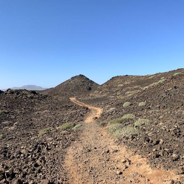 Isla de Lobos Wanderweg durch die Lava