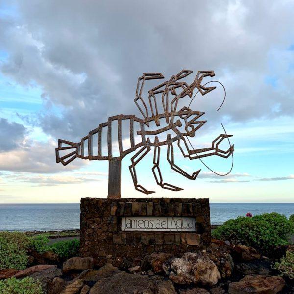 Jameos del Agua Lanzarote Symbol