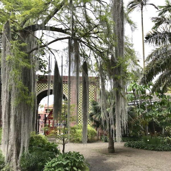 Blick auf den Eingang zum Jardin Botanico in Puerto Cruz