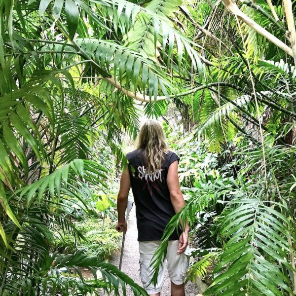 Der Jardin Botanico in Puerto de la Cruz bietet dir ein tropisches Ambiente