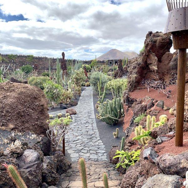 Jardín de Cactus Lanzarote Besuchszeit
