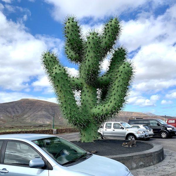Jardín de Cactus Lanzarote Parkplatz