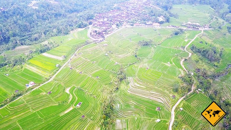 Jatiluwih Reisterrassen Bali 300 Hektar