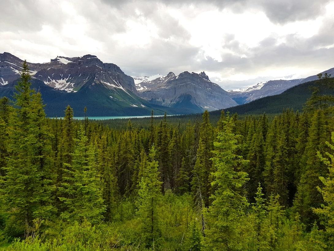 Kanada Rocky Mountains Icefield Parkway Banff