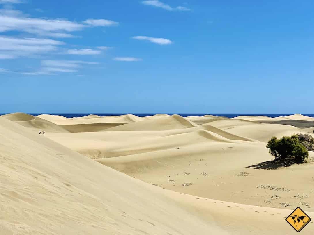 Kanarische Inseln Gran Canaria Sanddünen Maspalomas