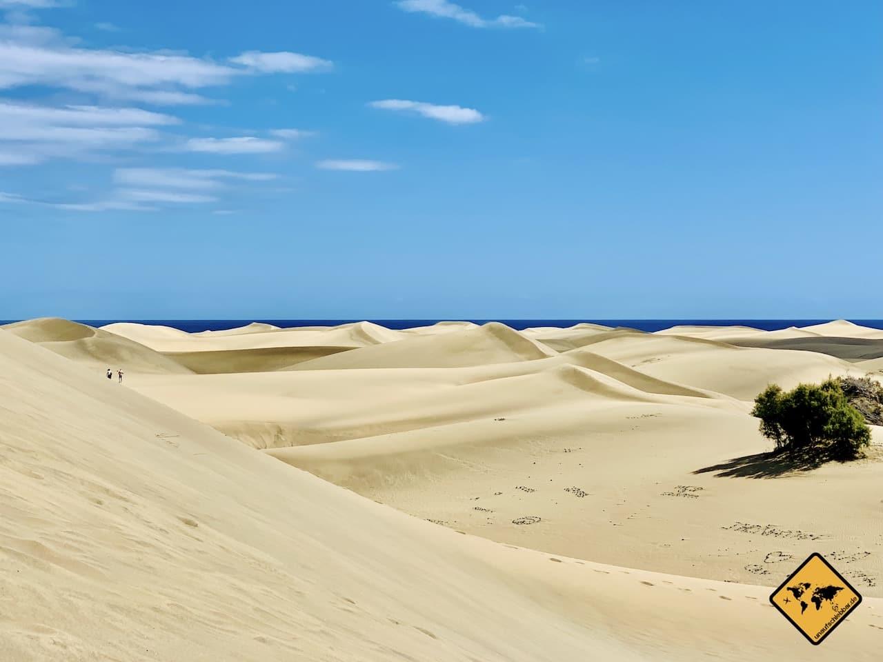 Kanarische Inseln Sanddünen Maspalomas