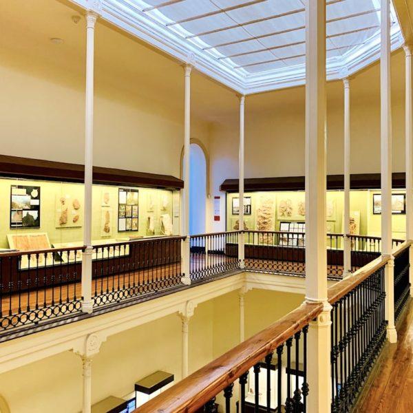 Kanarisches Museum Las Palmas
