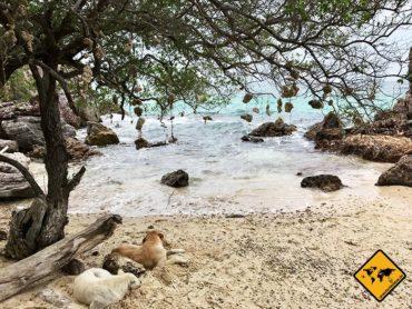 Koh Larn Thailand – türkis-blaue Traumstrände vor Pattaya