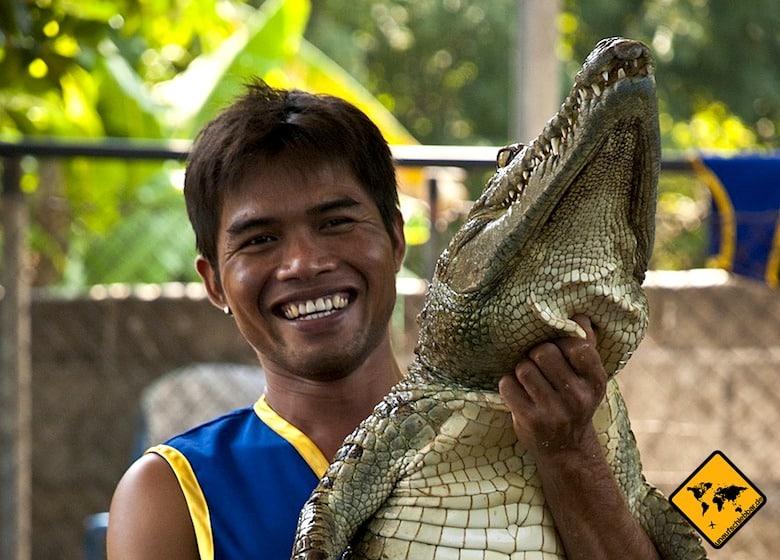 Koh Samui Attraktionen Krokodil